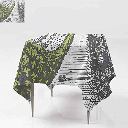 AndyTours Stain Square Tablecloth,Tuscany,Hand Drawn Style Vineyards Landscape Green Field Vintage Look,High-end Durable Creative Home,36x36 Inch Pistachio Green Pale Grey Violet