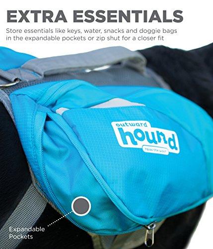 Outward Hound DayPak Dog Backpack Hiking Gear