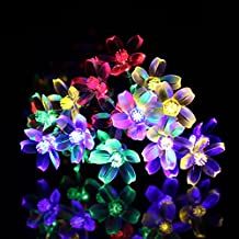Solar Powered Cherry Flower LED String Light 20 Lamp 16 Ft Waterproof Indoor and Outdoor Use Home Party Christmas Decorations by Home Impressions