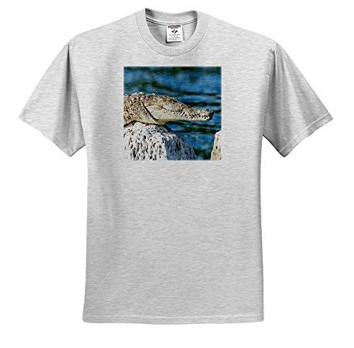 rinapiro-wild-animals-crocodile-alligator-popular-image-t-shirts-youth-birch-gray-t-shirt-med10-12-t