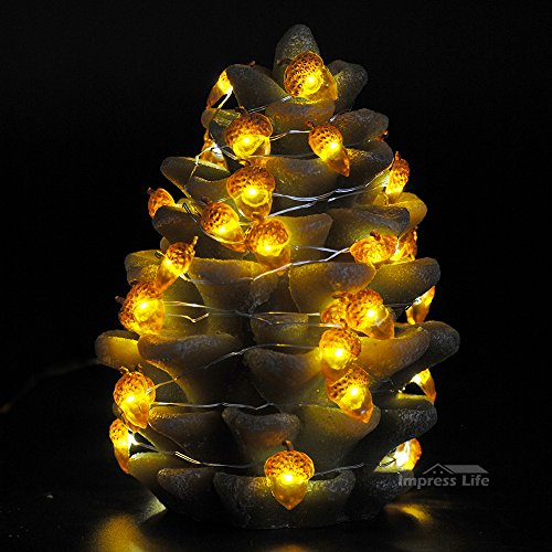 Impress Life Decorative Lights, Acorn Lights String 10 ft Copper Wire 40 LEDs New Battery-Powered for Ice Age, Camping, Wedding, Birthday Parties, Bedroom Decorations with Dimmable Remote & Timer by Impress Life (Image #4)