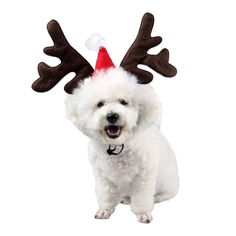 BESTOYARD Diadema para Mascotas de Navidad Perro Aro de Pelo Aro ...