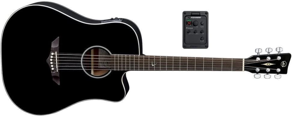 VGS RT-10 CE Root - Guitarra acústica, color negro: Amazon.es: Instrumentos musicales
