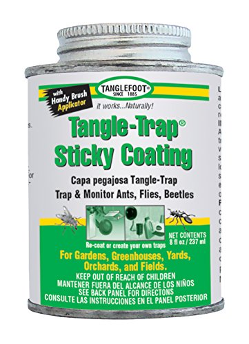 Tanglefoot 300000588 8-Ounce Tangle-Trap Brush On Sticky Trap Coating