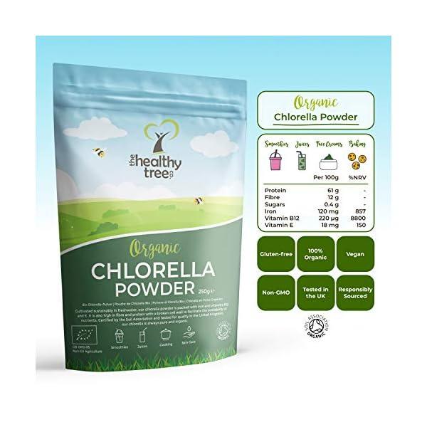 Polvere di Clorella Bio di TheHealthyTree Company per Succhi e Frullati - Alto Contenuto di B12, Proteine e Ferro - Muro… 2 spesavip