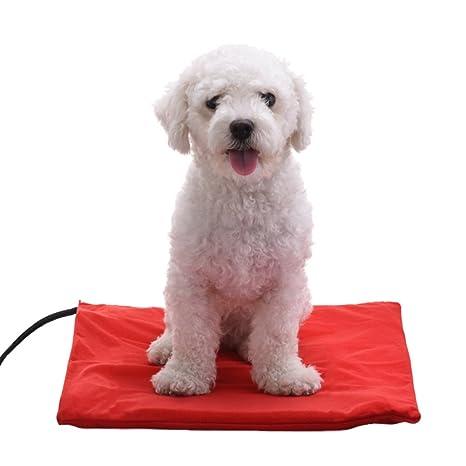 jannyshop Mascota Perro Cuadrado Cama de calefacción eléctrica calefacción Mat con Funda Desmontable para pequeño Mediano