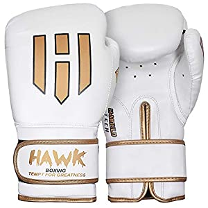 Well-Being-Matters 51U98r0UyvL._SS300_ Hawk Boxing Gloves for Men & Women Training Pro Punching Heavy Bag Mitts MMA Muay Thai Sparring Kickboxing Gloves