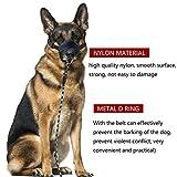 BAODATUI Nylon Dog Muzzle - Adjustable