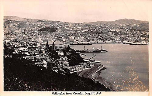 Wellington from Oriental Bay New Zealand Postcard