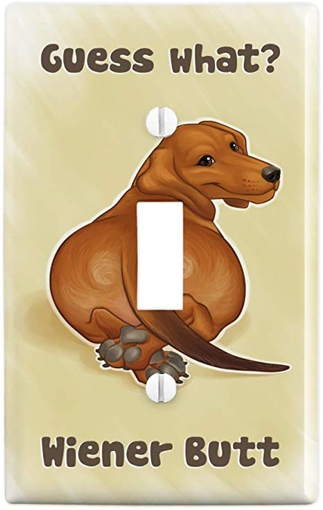 Amazon Com Graphics More Guess What Wiener Dog Butt Dachshund Funny Plastic Wall Decor Toggle Light Switch Plate Cover Furniture Decor