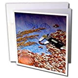 3dRose TDSwhite – Farm and Food - Food Beans Wheat Healthy - 12 Greeting Cards with Envelopes (gc_285120_2)