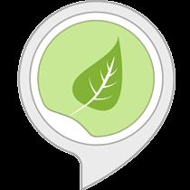 Sonidos Ambientales: Selva