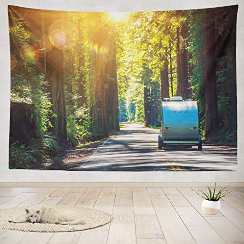 Summor Tapestry Wall Hanging Camping Travel Trailer California Camper Road Camp Home Decorations Living Room Bedroom Dorm 80x60 Inches ()