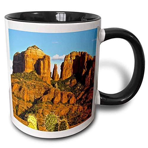 FiuFgyt Cathedral Rock At Sunset Prickly Pear Cactus Sedona Arizona USA Black Novelty Coffee Mugs for Men Ceramic Mug Funny for Women 11oz