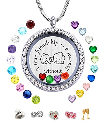 JOLIN A True Friendship is a Journey Without an End DIY Charms Floating Locket Birthstones Necklace Pendant Women, Best Gift -