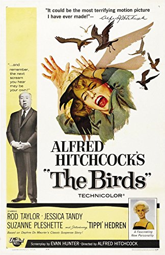 "The Birds  Movie Poster 24""x36"""