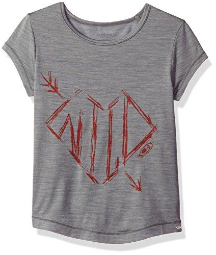 Icebreaker Merino Kids Cool-Lite Spheria Short Sleeve Wild Arrow Graphic T-Shirt, Fossil Heather, Size 06