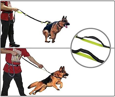 Zerlar - Arnés de nailon reflectante para correa de perro, para ...