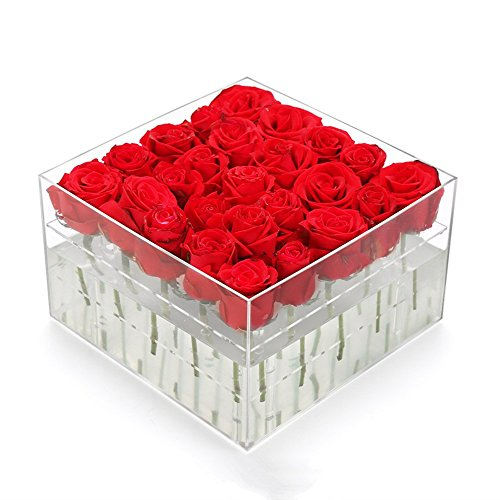 Greatpril Acrylic Flower Pot Wedding Flower Holder Multifunction Rose Water Holder Eyeliner Organizer 25 Hole 2 - Flowers Acrylic