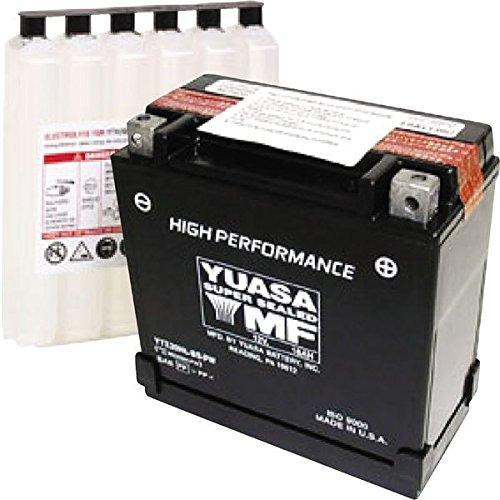 (Yuasa YUAM620BH-P YTX20HL-BS-PW Battery)
