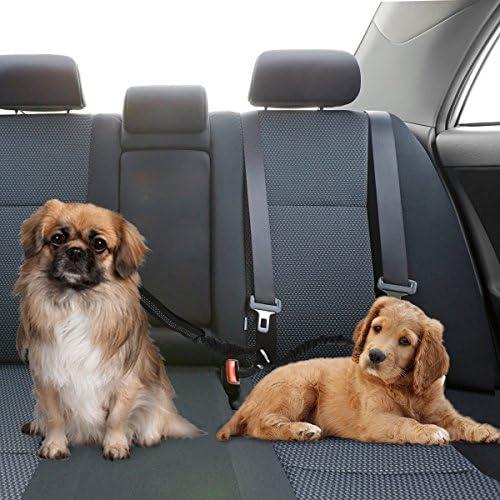 Slowton Doppelt Hund Sicherheitsgurt Doppelhaustier Sicherheitsgurt Verstellbarer Mit Elastischem Bungee Und Reflektierendem Streifen Keine Verwicklung Sicherheitsgurt Splitter Im Fahrzeug Haustier