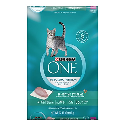 Purina ONE Sensitive Skin & Stomach Formula Adult Dry Cat Fo