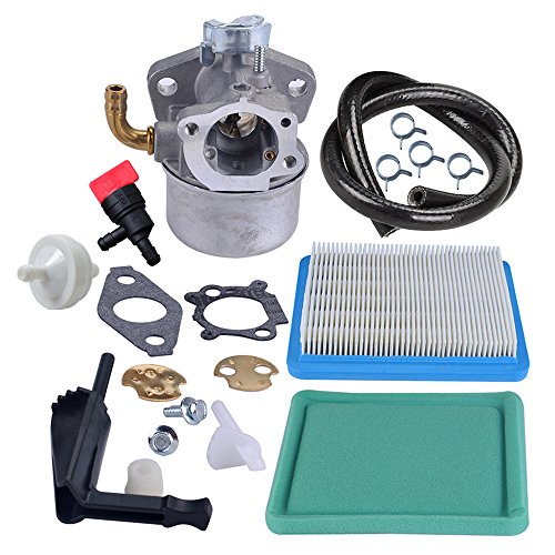 Briggs Stratton Intek - Panari Carburetor Carb + Air Filter Fuel Line Filter for Briggs and Stratton 798653 697354 790290 791077 698860 Lawn Mower Parts