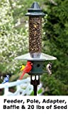 Squirrel Buster Plus Bird Feeder with Pole, Guard, and Seed