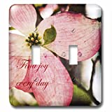 3dRose lsp_57208_2 Find Joy Every Day Pink Dogwood Flower Inspirational Floral Print Double Toggle Switch