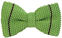 Green/Dark Brown Micro Bar Striped Pre-Tied Silk Bow Tie by 40 Colori