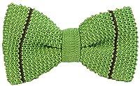 Green/Dark Brown Micro Bar Striped Pre-Tied Silk Bow Tie by 40 Colori