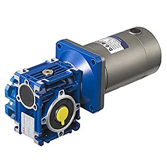Tsiny electric 24v 100w high torque dc worm gear motor for Reduction gearbox for electric motor