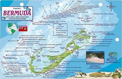 Bermuda Dive Map Reef Creatures Guide Franko Maps Laminated Fish