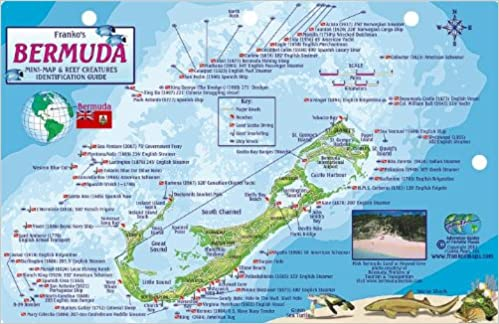 Bermuda Dive Map & Reef Creatures Guide Franko Maps Laminated Fish ...