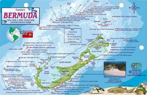 Bermuda Dive Map & Reef Creatures Guide Franko Maps Laminated Fish (Bermuda Fish)