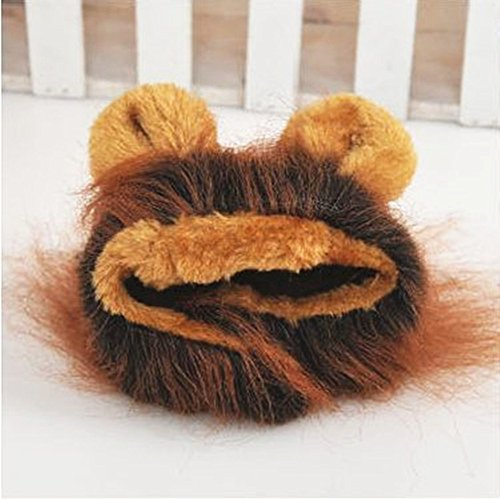 Sporer@ Pet Costumes Lion Mane Wig Cat Costume and Small cat and dog Costume with Complimentary Feathered Catnip Toy Headwear Hat with Ears for (Beauty And The Beast Dog Costumes)