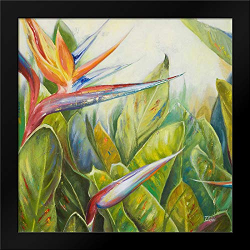 (Bird of Paradise II 20x20 Framed Art Print by Pinto, Patricia)