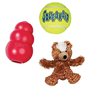 Amazon.com : Kong Squeak Dog Toys Variety Pack (X-Small