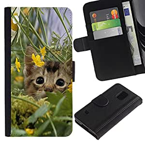 Billetera de Cuero Caso Titular de la tarjeta Carcasa Funda para Samsung Galaxy S5 V SM-G900 / Cute Kitten Cat In Field / STRONG