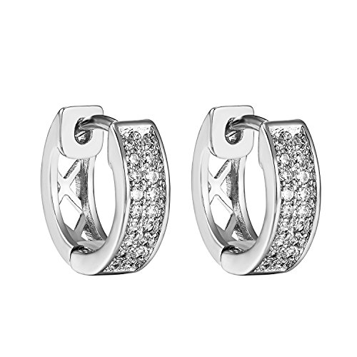Hoop Style Design Earrings 14k White Gold Finish Cubic Zirconia Cluster Set (14k Gold Design Earrings)
