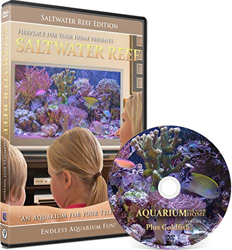 (Aquarium for Your Home: Saltwater Reef an Aquarium for Your Television)