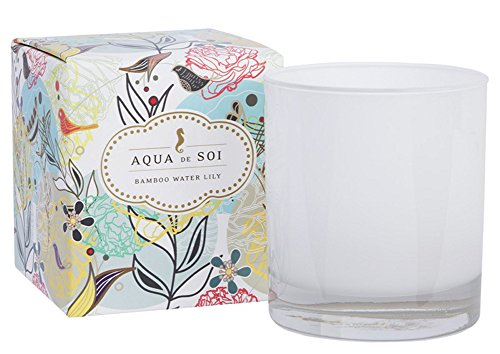 The SOi Company Aqua de SOi 100% Premium Natural Soy Candle, 11 Ounces Boxed Jar, Bamboo Water Lily