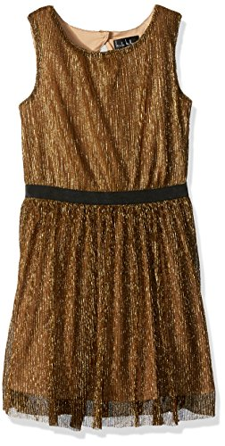 Nicole Miller Big Girls' Metallic Dress, Gold, 14/16