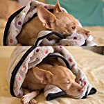 PAWZ Road Pet Dog Blanket Fleece Fabric Soft and Cute 4 Colors 4 Sizes 14