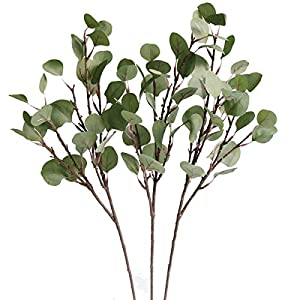 Jasming Artificial Eucalyptus Silver Dollar Greenery Frosted Bouquet Filler Faux Flowers for Floral Crown Spring Summer Decor 30