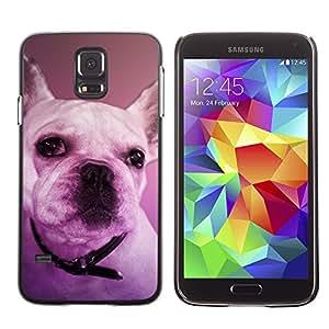 Vortex Accessory Carcasa Protectora Para SAMSUNG GALAXY S5 V G9000 - French Bulldog Boston Terrier Purple Dog -