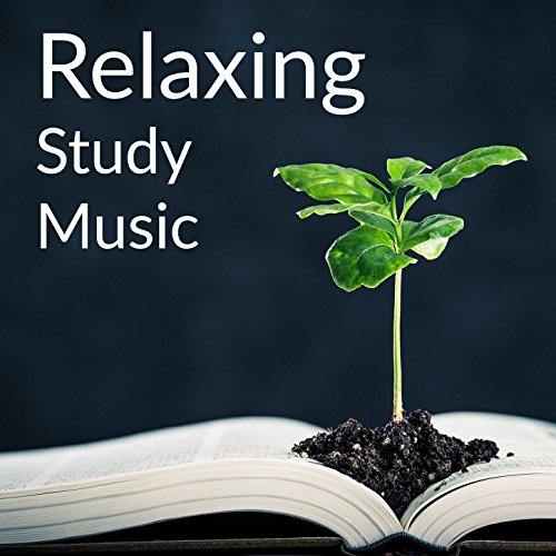 STUDY MUSIC - YouTube