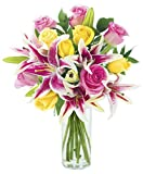 KaBloom Lily Pop Bouquet with Fresh Roses: 5 Pink Roses, 5 Yellow Roses, 5 Stargazer Lilies and Lush Greens with VaseDoggy Supply Mall
