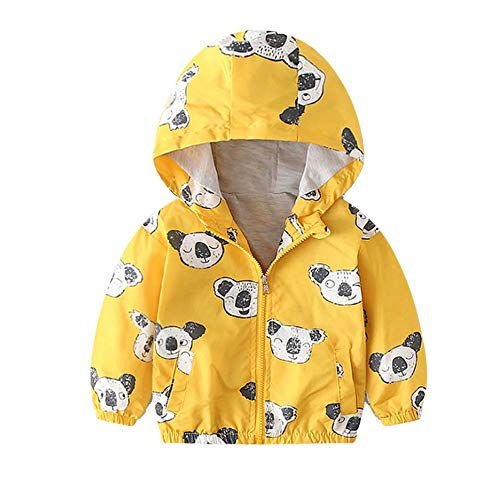 Little Kids Autumn Coat,Jchen(TM) Children Baby Kids Little Boy Girl Cartoon Coat Jacket Outerwear Excavator Dinosaur Hooded Windbreaker for 1-5 Y (Age: 18-24 Months, Koala) by Jchen Baby Coat