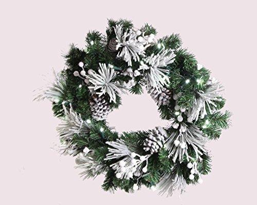 Christmas Wreath Led Lights in Florida - 1